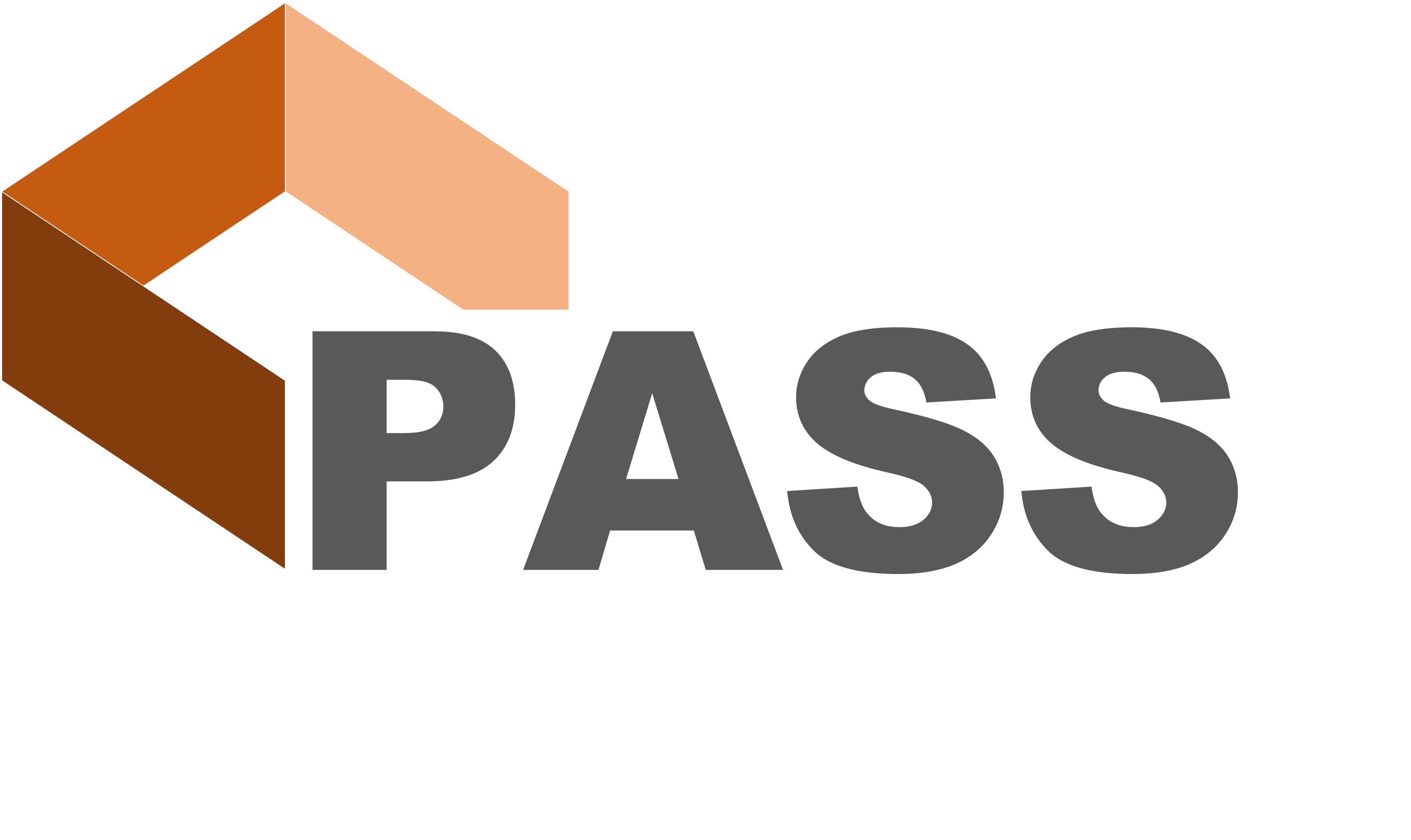 PASS – Plan Analysis using Self-learning Solutions